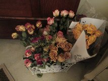 """Long Stemmed """"Dried"""" Roses in Houston, Texas"""